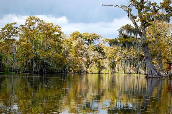 Hồ Caddo, texas