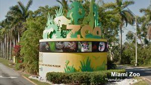 Miami-Zoo-My