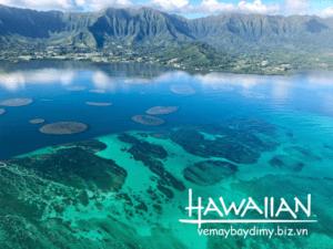 dao-oahu-hawaii