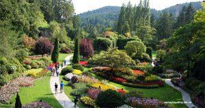 vuon-bach-thao-Montreal-Botanical-Garden